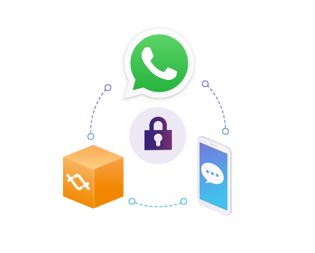 Whatsapp Business Security